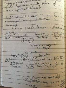 mind-map-mark-yeast